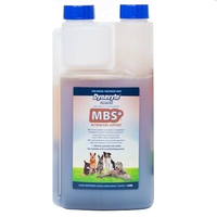 Dynavyte MBS for Dogs Gut Health Microbiome Support - 4 Sizes image