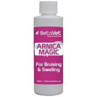 BetaVet Natural Solutions Horse Arnica Magic Muscle Tendon 250ml image